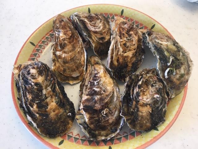 牡蠣 食べ 放題 愛知